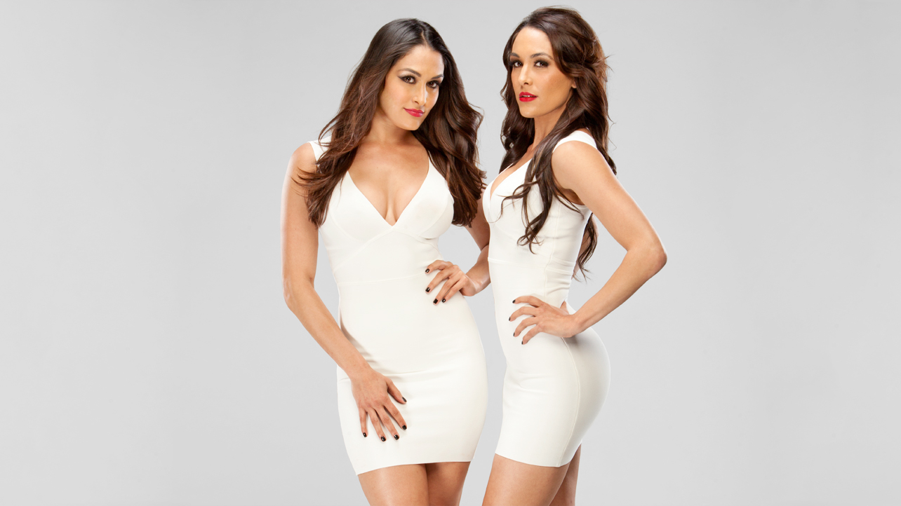 the bella twins wallpapers 2013 images femalecelebrity