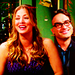 The Couples  - the-big-bang-theory icon