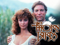 The Thorn Birds ಇ