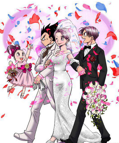 The marriage of Bulma