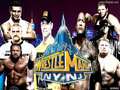 WRESTLEMANIA 29 POSTER - wwe-wallpaper wallpaper