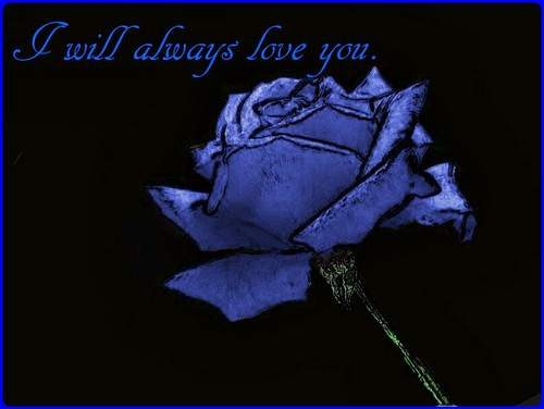 always_love_you