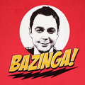 bazinga - the-big-bang-theory photo