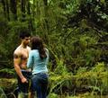 bella&jacob - twilight-series photo