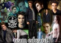 edward:D - twilight-series photo