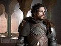 Robb Stark - game-of-thrones photo