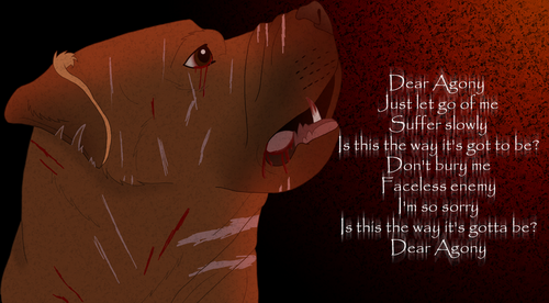poor dog; lyrics dear agony