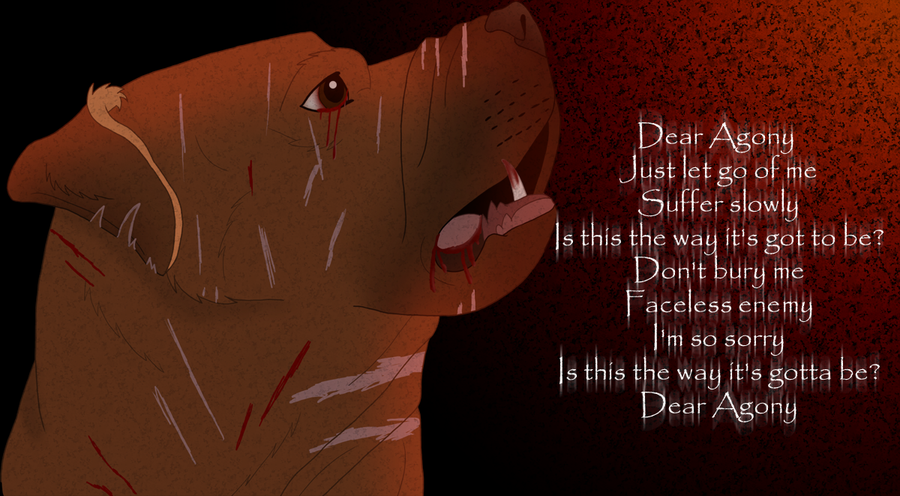 poor dog; lyrics dear agony - Breaking Benjamin Photo ...