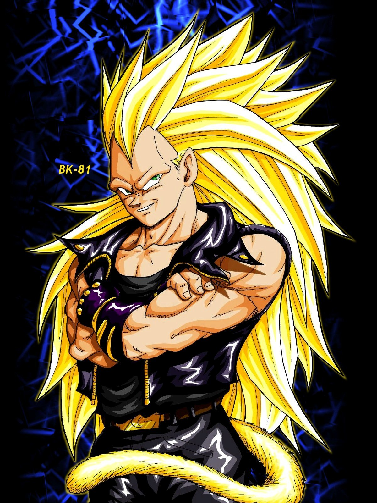 Dragon Ball Z super saiyan biker vegeta