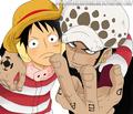 *Luffy & Law*