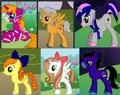 Abigail, Dayton, Lucy, Maylene, Yasmin and Cyrus as Ponies