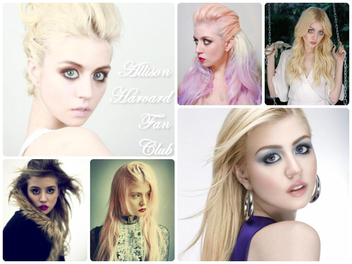 Allison Harvard 潮流粉丝俱乐部 Club [LINK IN COMMENTS]