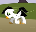 Ash as a pony. :3
