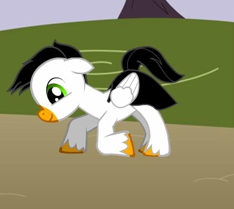 Emma the chim cánh cụt hình nền called Ash as a pony. :3