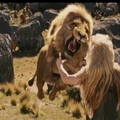 Aslan jumps on Jadis.