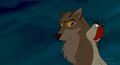 B@lt0 - balto photo