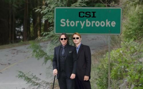 CSI STORYBROOKE