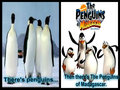 Comparison - penguins-of-madagascar fan art
