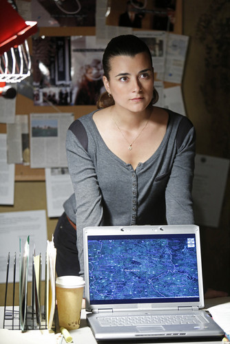 "Cote de Pablo as Ziva David NCIS 10x20 ""Chasing Ghosts"" episode still"
