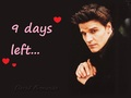 Countdown to Anj's Birthday! {David Boreanaz/Angel} ಇ