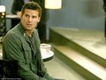 David Boreanaz Wallpaper - david-boreanaz wallpaper