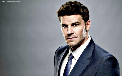 David Boreanaz Hintergrund with a business suit and a suit entitled David Boreanaz Hintergrund