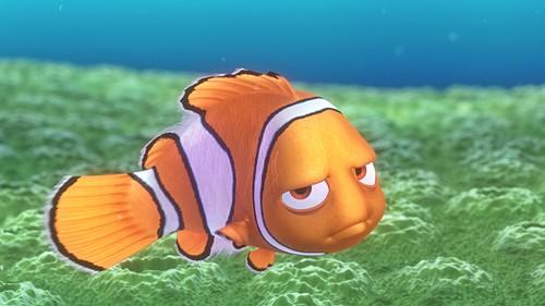 Finding Nemo Disney Walt Disney Movies Fish Animation: Walt Disney Characters Images