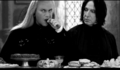 Embarrassing Photos of Snape & Lucius