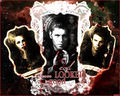 Evil never looked so good - the-vampire-diaries-tv-show wallpaper
