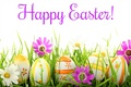 Happy Easter All My شائقین