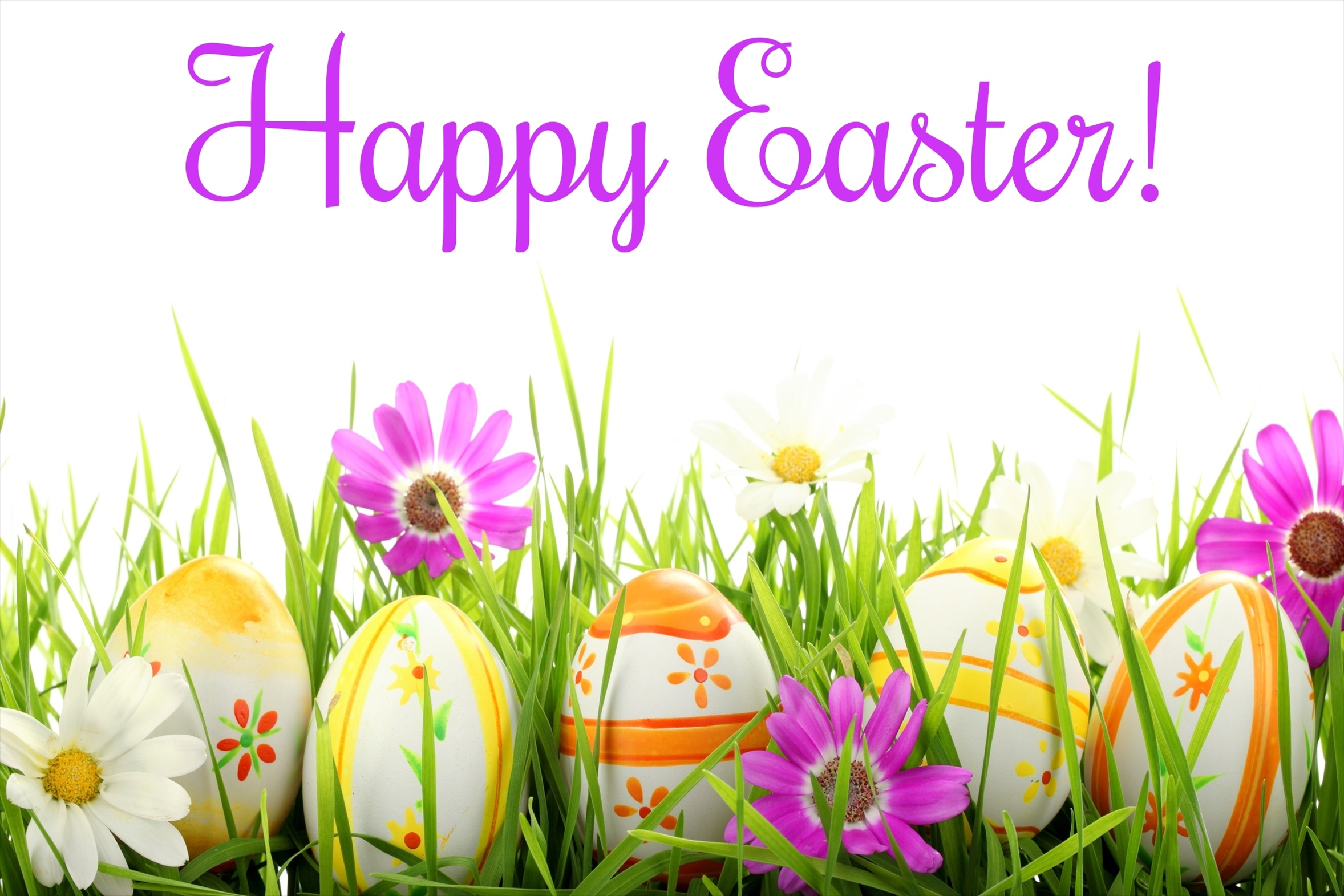 http://images6.fanpop.com/image/photos/34000000/Happy-Easter-All-My-Fans-happy-easter-all-my-fans-34039483-2356-1571.jpg