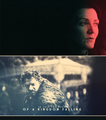 House Stark - house-stark fan art