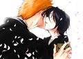 Ichigo & Rukia - anime fan art