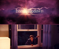 Jasper Breaking Dawn - jasper-hale photo