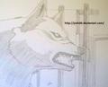 Kiba - wolfs-rain fan art