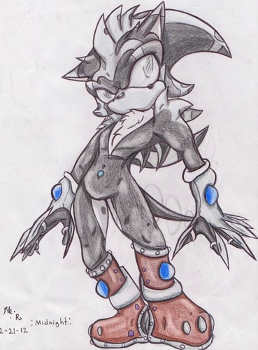 Midnight the Hedgehog (Gift/Request for Midnight Assassin on DA)