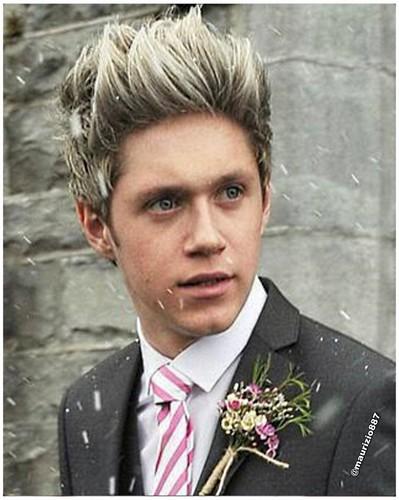 Niall Horan, 2013