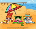 PPG - the-powerpuff-girls photo