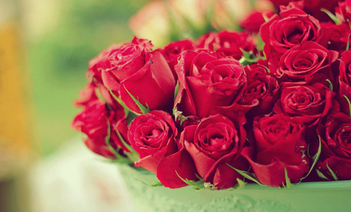 Flowers wallpaper with a bouquet, a rose, and a rose entitled Roses