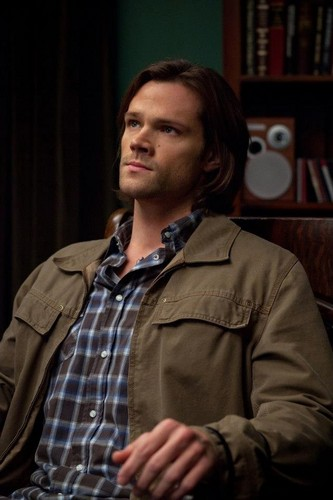Sam Winchester wolpeyper possibly with a green birete titled Sam Winchester