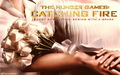 THG Catching Fire Wallpaper - the-hunger-games wallpaper