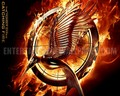upcoming-movies - The Hunger Games : Catching Fire [2013] wallpaper