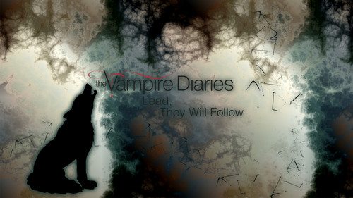 Дневники вампира Обои probably with a sunset called The Vampire Diaries Обои Series