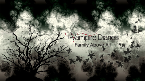 Дневники вампира Обои probably containing a beech, a sumac, and a live oak called The Vampire Diaries Обои Series