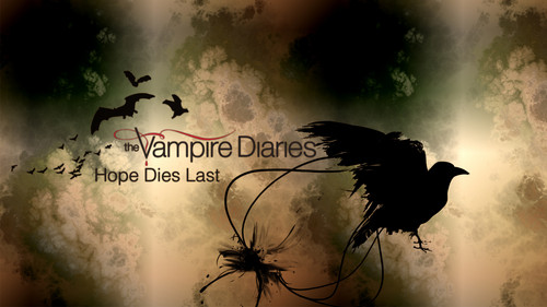 The Vampire Diaries achtergrond probably with a bouquet and a sign called The Vampire Diaries achtergrond Series