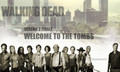 The Walking Dead Season 3 Finale Poster Cast - the-walking-dead photo