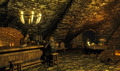 Thieves Guild - elder-scrolls-v-skyrim photo