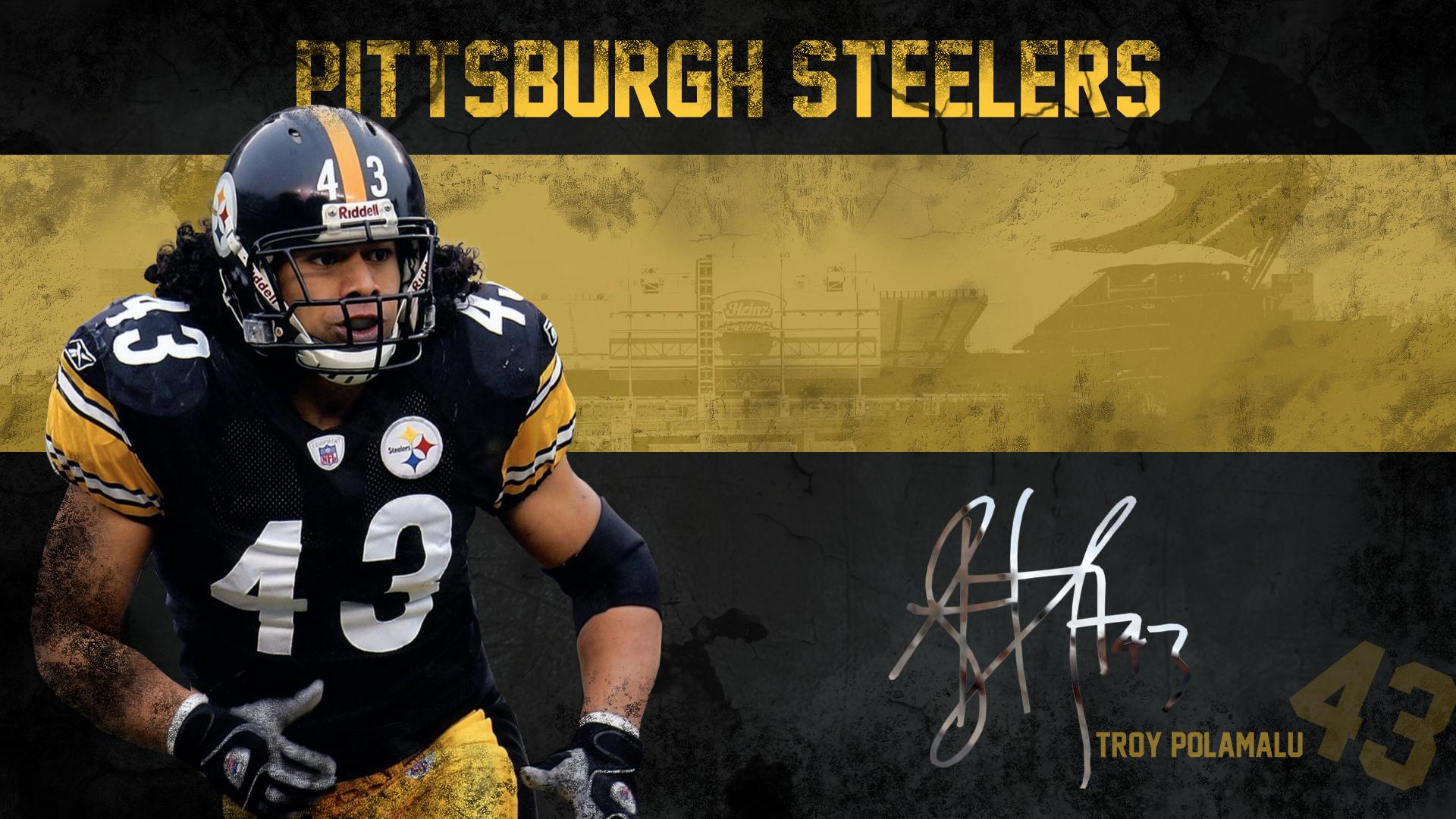 Pittsburgh Steelers Images Troy Polamalu Wallpaper HD And Background Photos