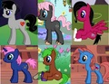 Vincent, Amy, Hazel, Angie, Mia and Lauren as Ponies