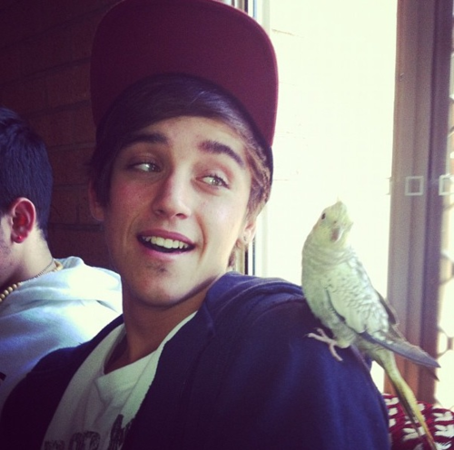 Janoskians wallpaper containing a cockateel called beau brooks ♥♥